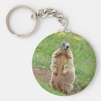 Sentinel marmot key ring