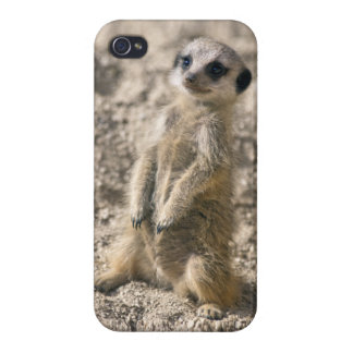 Sentry-in-Training iPhone 4 Savvy Case Case For iPhone 4
