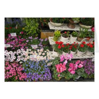 Seoul Flower Shop Card