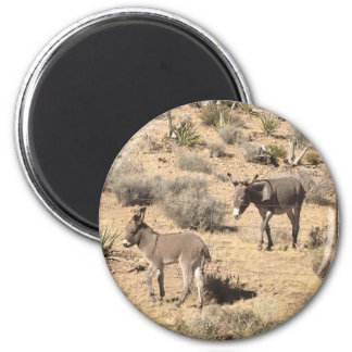 Separated by borders 6 cm round magnet