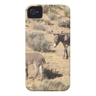 Separated by borders iPhone 4 case