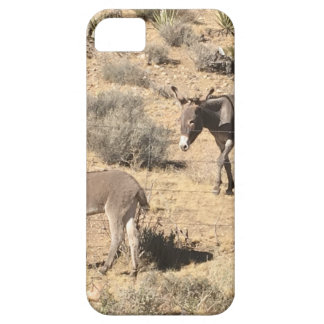 Separated by borders iPhone 5 case
