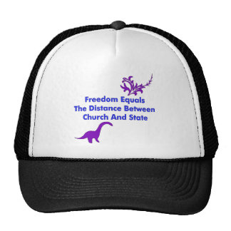 Separation of Church and State Hat