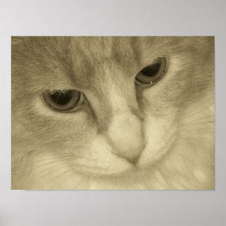 Sepia Cat Print