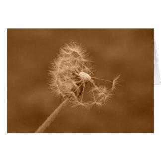 Sepia Dandelion Card (Blank)