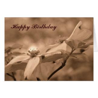 Sepia Dogwood Flower Photography Birthday Card