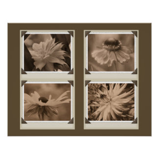 Sepia Flowers Collage Nature Poster