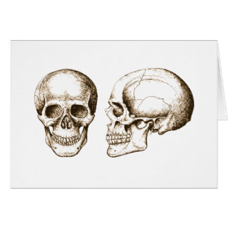 Sepia Front Side Human Skull Card