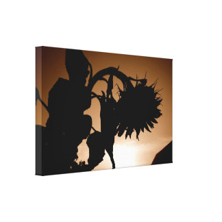 Sepia Giant Sunflower Sunrise Silhouette Canvas Print