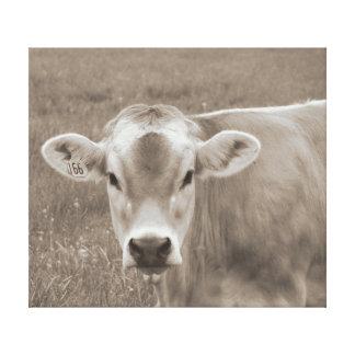 Sepia Jersey Cow Portrait Canvas Print