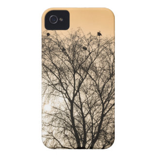 Sepia Roosting birds iPhone 4 Case-Mate Case