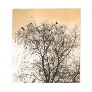 Sepia Roosting birds Notepad