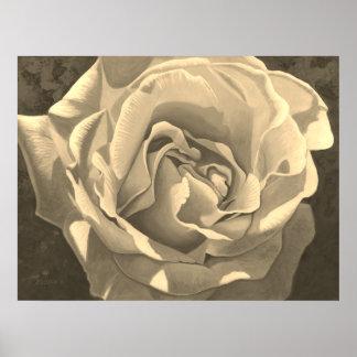 Sepia Rose - Poster