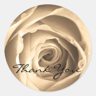 Sepia Rose, Thank You Classic Round Sticker