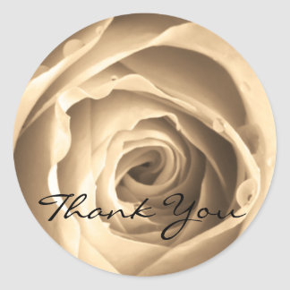 Sepia Rose, Thank You Stickers