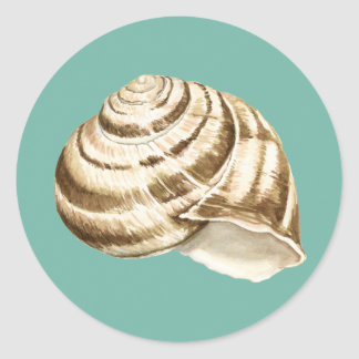 Sepia Striped Shell on Teal Classic Round Sticker