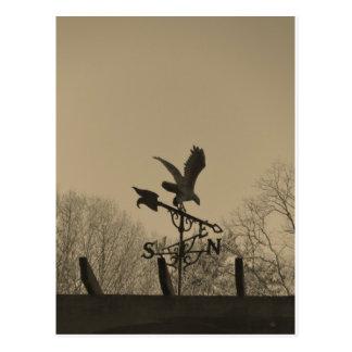 Sepia Tone Eagle Weather vane Postcard