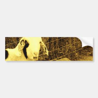 Sepia tone Goat Bumper Sticker