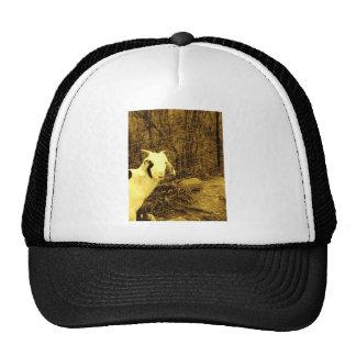 Sepia tone Goat Mesh Hat