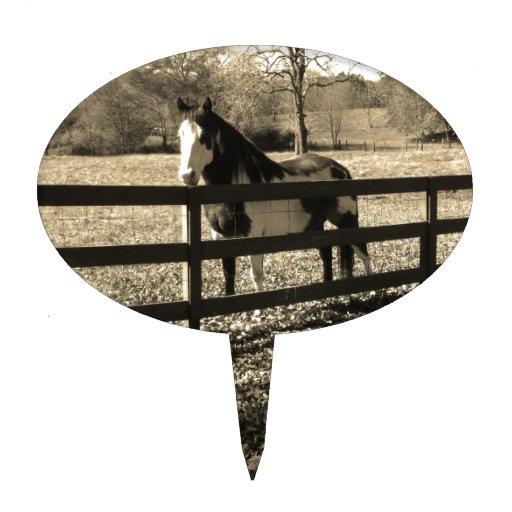 Sepia Tone  Photo of  black and white Horse Cake Pick