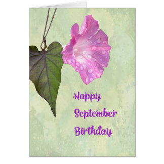 September Birthday Card with Morning Glory