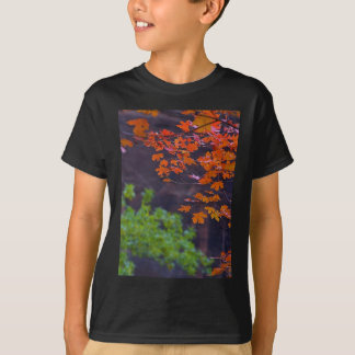 SEPTEMBER PICTURES SHIRT