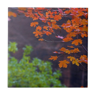 SEPTEMBER PICTURES SMALL SQUARE TILE
