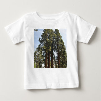 Sequioa National Park Baby T-Shirt