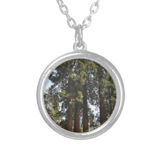 Sequioa National Park Silver Plated Necklace