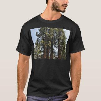 Sequioa National Park T-Shirt