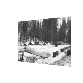 Sequoia National Park Snow Scene in Village Canvas Prints