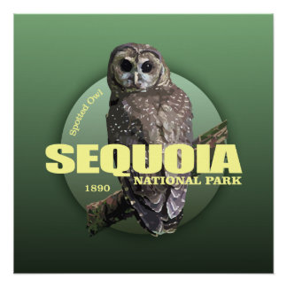 Sequoia NP (Spotted Owl) WT Poster