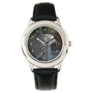 Serene African Grey Parrot Watch