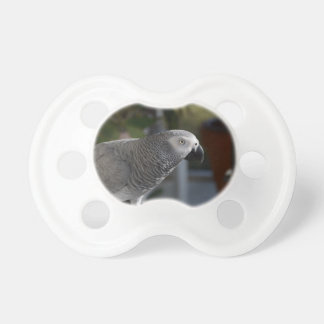 Serene African Grey Parrot Pacifiers