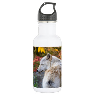 Serene Autumn Wolf 532 Ml Water Bottle