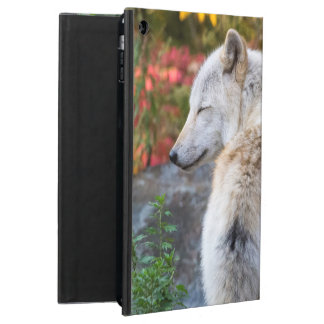 Serene Autumn Wolf Case For iPad Air