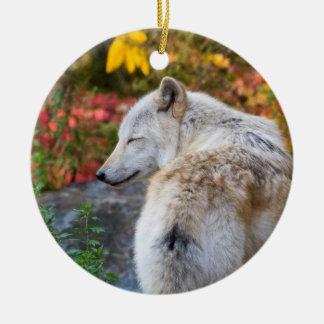 Serene Autumn Wolf Round Ceramic Decoration