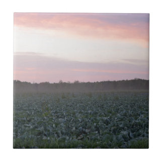 Serene_country_background.JPG Tile