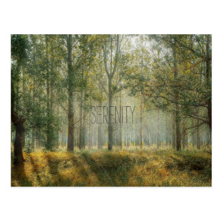 Serenity Nature Postcard