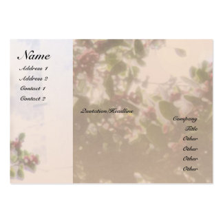 Serenity Prayer Holly Profile Card Large Business Cards (Pack Of 100)