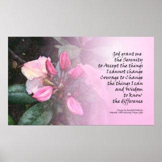 Serenity Prayer Pink Rhodies Poster