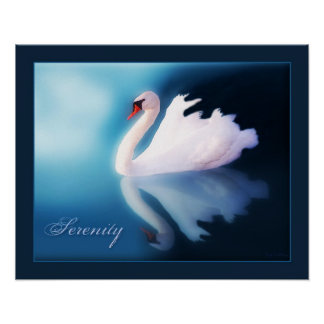 Serenity - Swan Poster Poster