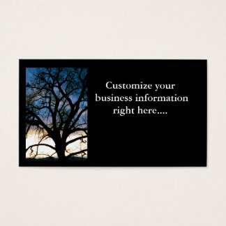 Serenity Tree Business Card