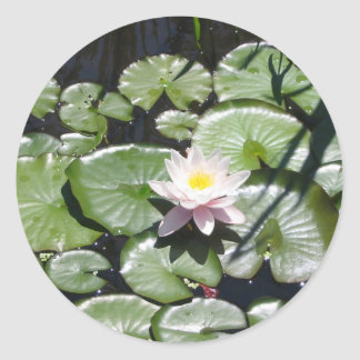 Series water lily classic round sticker