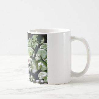 Series water lily coffee mug