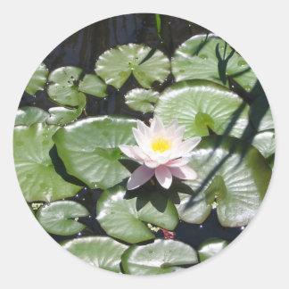Series water lily round sticker