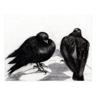 Serious Pigeon Situation 2012 Postcard