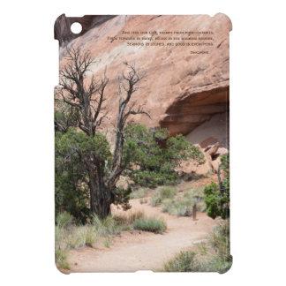 Sermons in Stones iPad Mini Cover