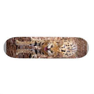 serval 018 skateboard decks