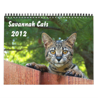 Serval Savannah Cat Calendar